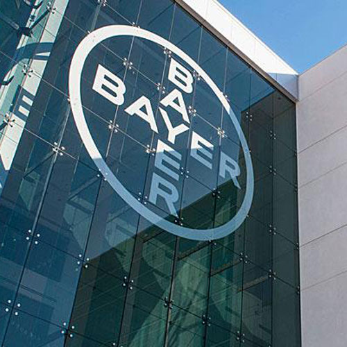 bayer assume giovani laureati