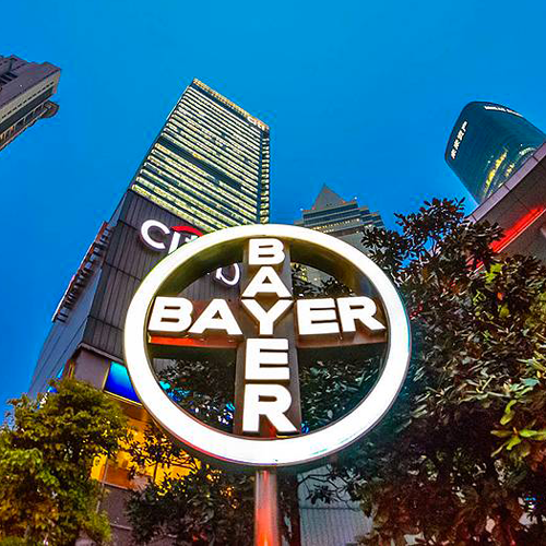 bayer assume laureati